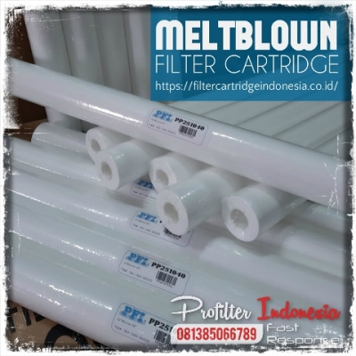 PFI PP25 Spun Cartridge Filter Indonesia  large