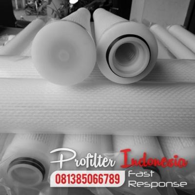 Pleated Teda Filter Cartridge Indonesia  large
