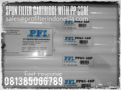 Spun PP Core Filter Cartridge Indonesia  large