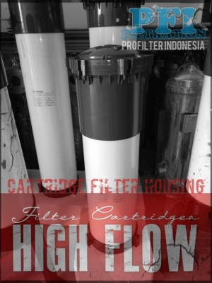 d d PFI UPVC High Flow Cartridge Filter Housing Indonesia  large