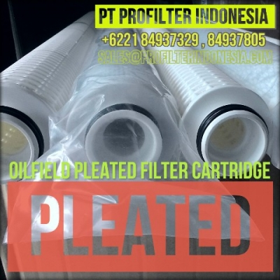 d oilfield pleated filter cartridge indonesia  large